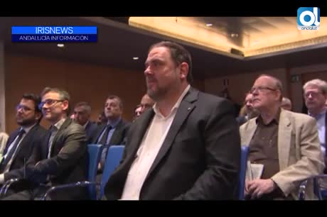 Junqueras pide al Tribunal Constitucional su libertad