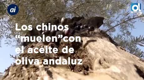Los chinos 'muelen' con el aceite de oliva andaluz