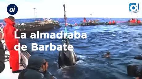 La almadraba de Barbate realiza la primera levantá de atunes del año