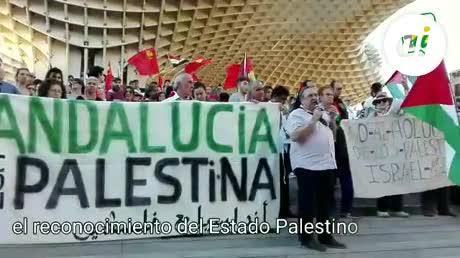 IU reclamará al Pleno municipal el reconocimiento del Estado palestino